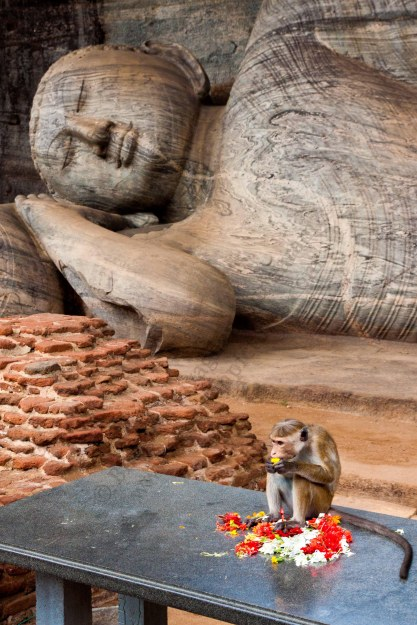 gal vihara,reclining buddha,ancient ruins of polonnaruwa,sri lanka tour